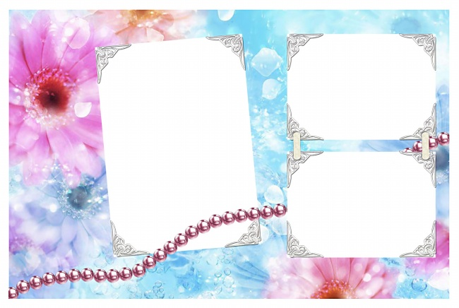 Flower background photo frame picture material