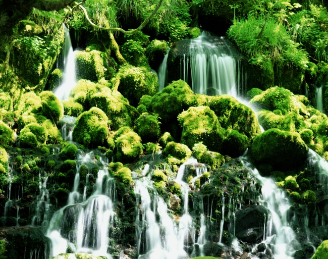 Forest waterfall picture download