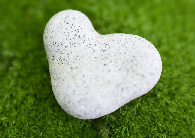 Grass heart-shaped stones pictures