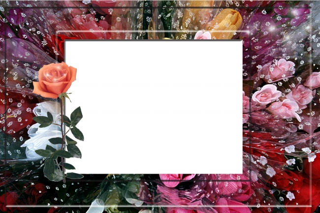 Rose photo frames HD pictures