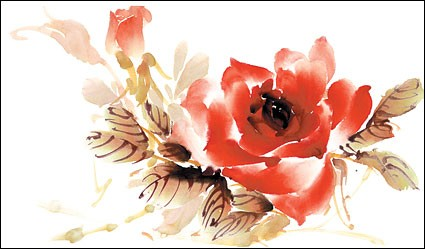 Rose watercolor style layered psd