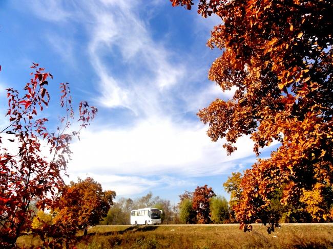 Suburban autumn landscape picture