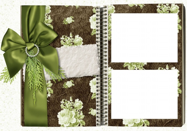 The Green Ribbon Notepad photo frame picture