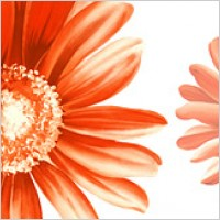 Hand-painted flowers layered material psd-12