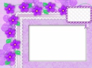 HD beautiful fresh flowers photo frame picture