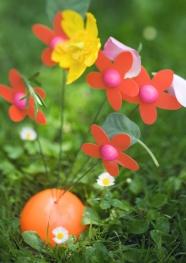 HD Sun flower picture