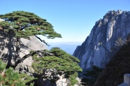 Huangshan scenic pictures