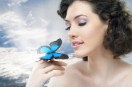 The eyes beautiful Butterfly pictures