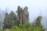 Zhangjiajie scenic pictures