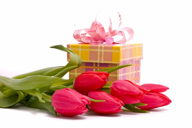 Tulip gift box HD pictures