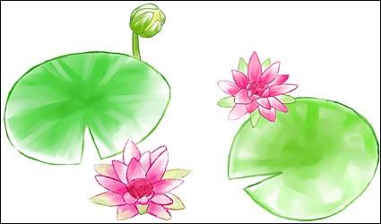 Watercolor style lotus