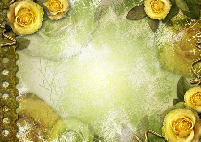 Yellow rose flower border pictures download