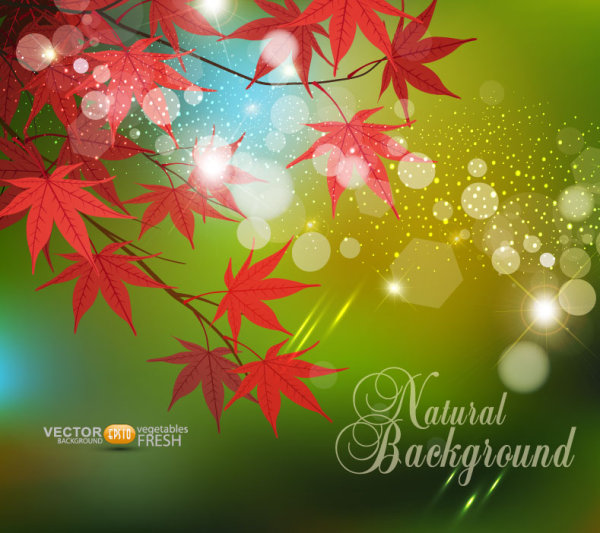 Fall of Maple Leaf elements background vector 09