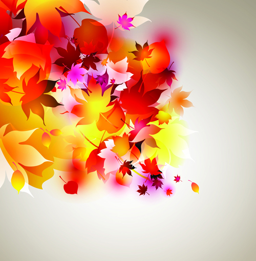 Set of Abstract Autumn Leave design elements vector 04