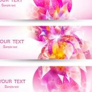 Colorful Halation banner vector 03