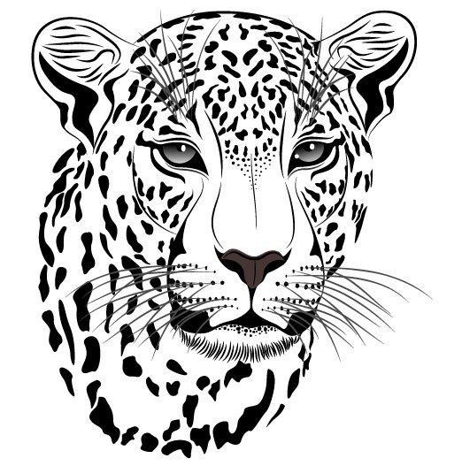 Set of Cheetah vector picture art 14 | Free download