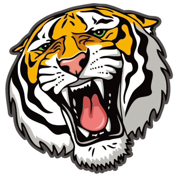 Set Of Tiger Vector Picture Art 26 Free Download