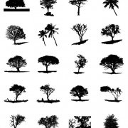Different Trees Silhouettes vector 02