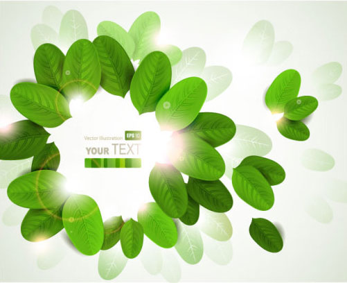 Shiny Leaves vector background 03