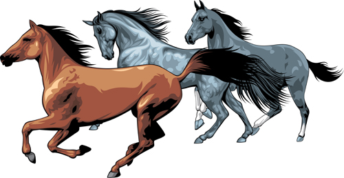 Different Running Horses Vector 03 Free Download