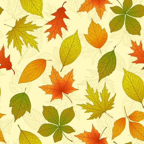 Bright autumn leaves vector backgrounds 03