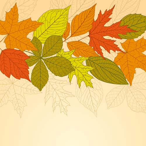 Bright autumn leaves vector backgrounds 05