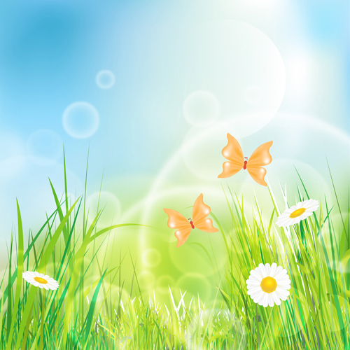 Summer Grass vector background 03