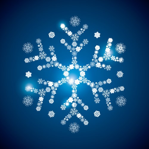 Shining snowflakes ornaments design vector graphics 05