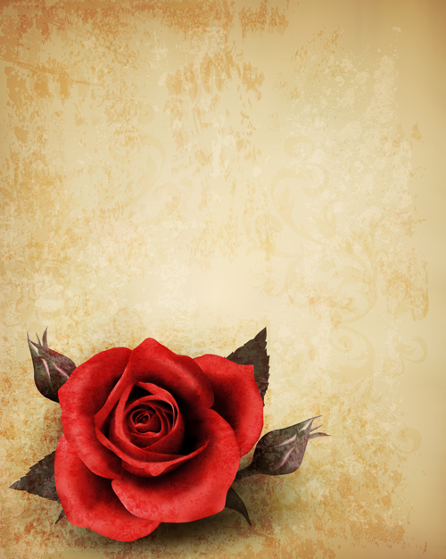 Roses And Vintage Background Vector 01 Free Download