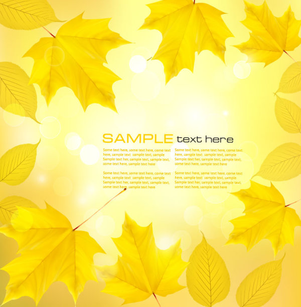 Autumn of Maple leaf vector background set 01