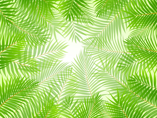 Elements of Tropical Scenery background vector 01