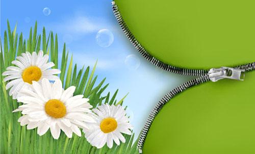 Spring green grass Background vector 05
